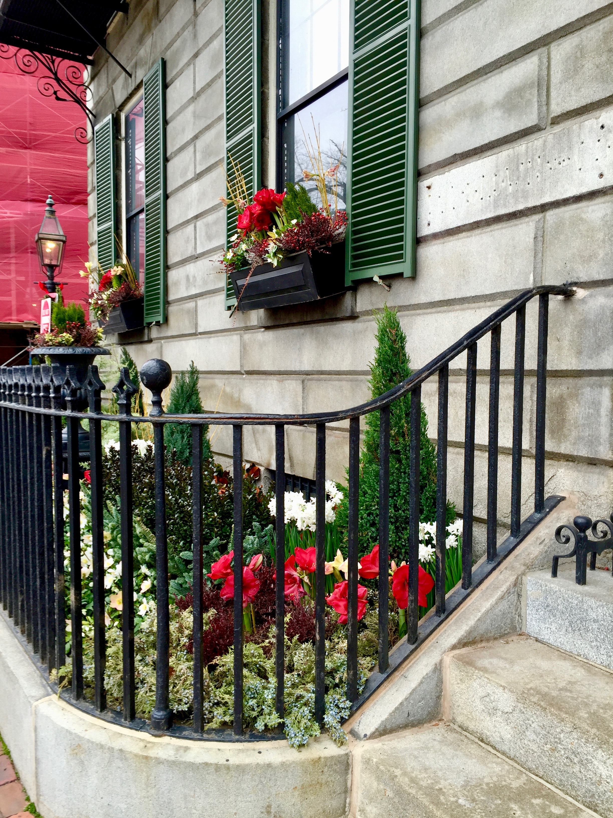 Beacon Hill Christmas Decorations and window boxes
