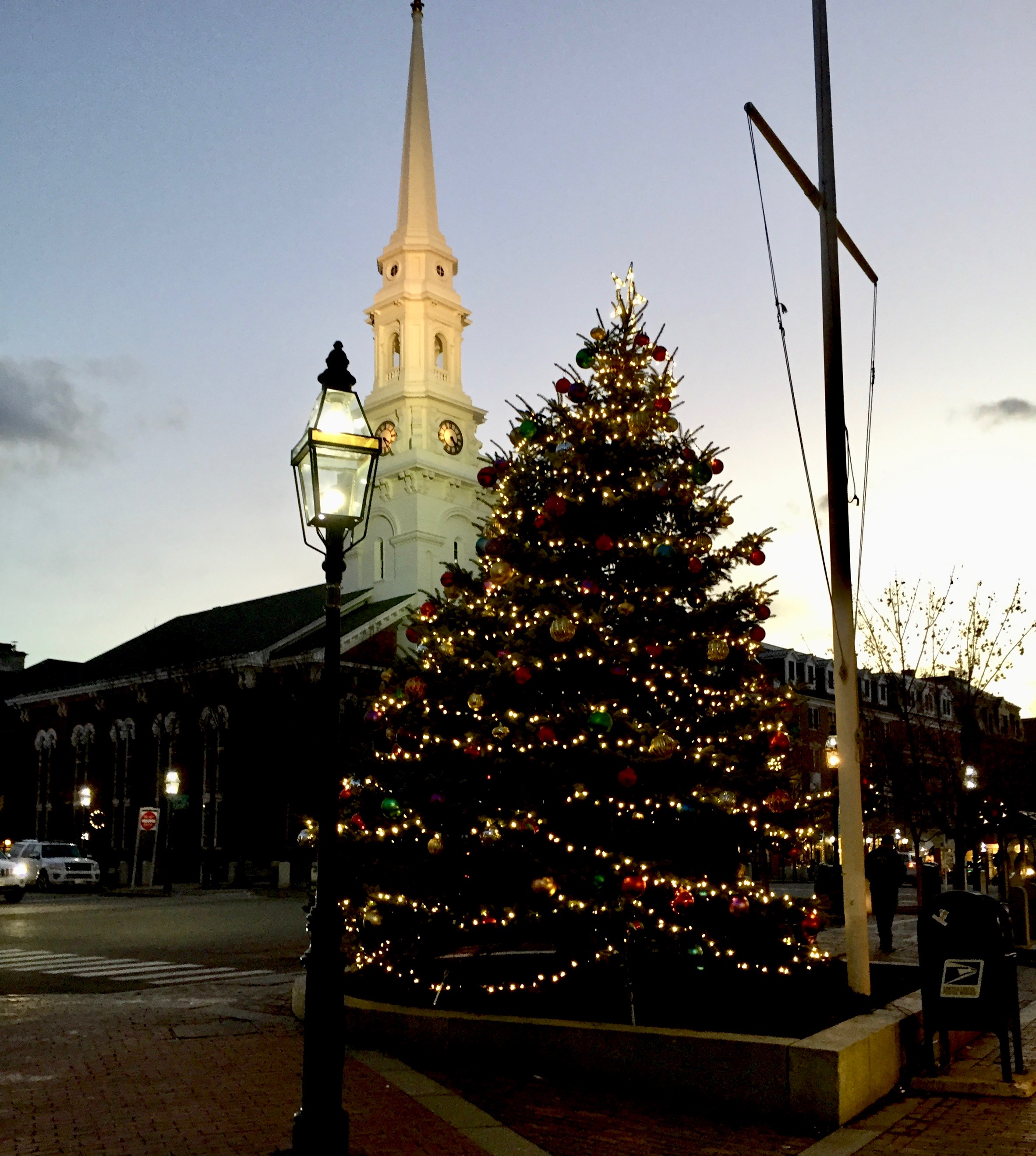 Christmas Tree in Portsmouth New Hampshire .jpg