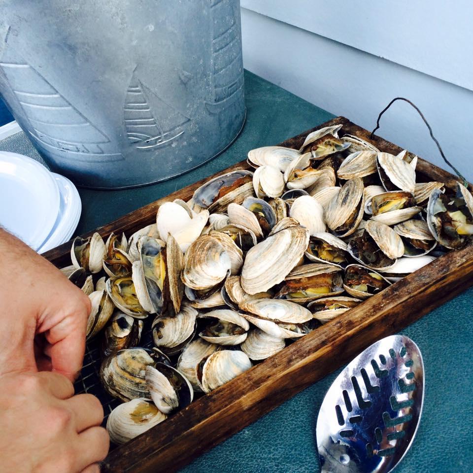 clambake in New England.jpg
