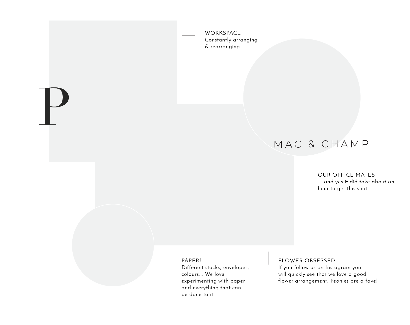 Miss Poppy Design June 2018 Website design-12.png