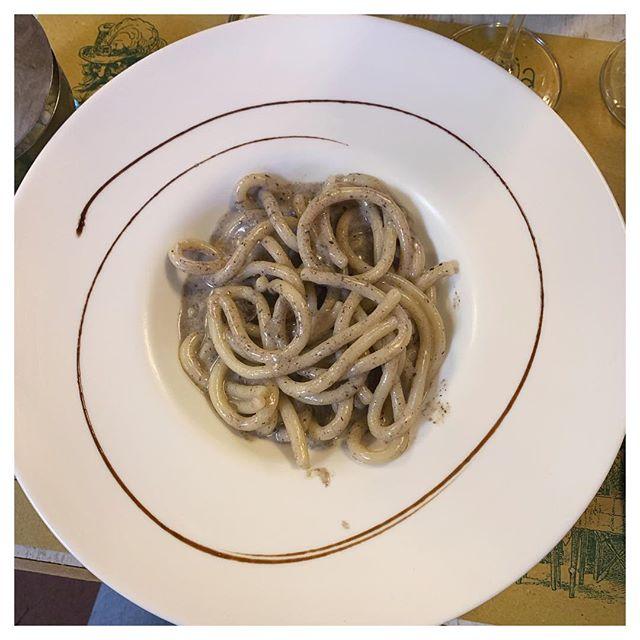 Pici senesi al bel tartufo - fresh Sienese pasta with truffles. I'm dead. . . . . . . #picisenesi #picipasta #tartufo #truffle #pasta #florence #firenze #italianfood #italy #italia #freshpasta #food #ilgattoelavolpe