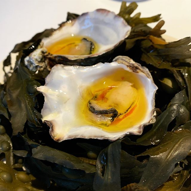 Happiness is... a fresh oyster. When it is a Flaggy Shore, gently poached in roasted koji butter and Highbank Orchard apple balsamic from @aimsir_restaurant, it's always a plus. 😁 . . . . . #aimsir #aimsirrestaurant #cliffatlyons #irishfood #irishoyster #oyster #seafood #tastingtheisland #huitres #passionhuitres #michelinguide #lefooding