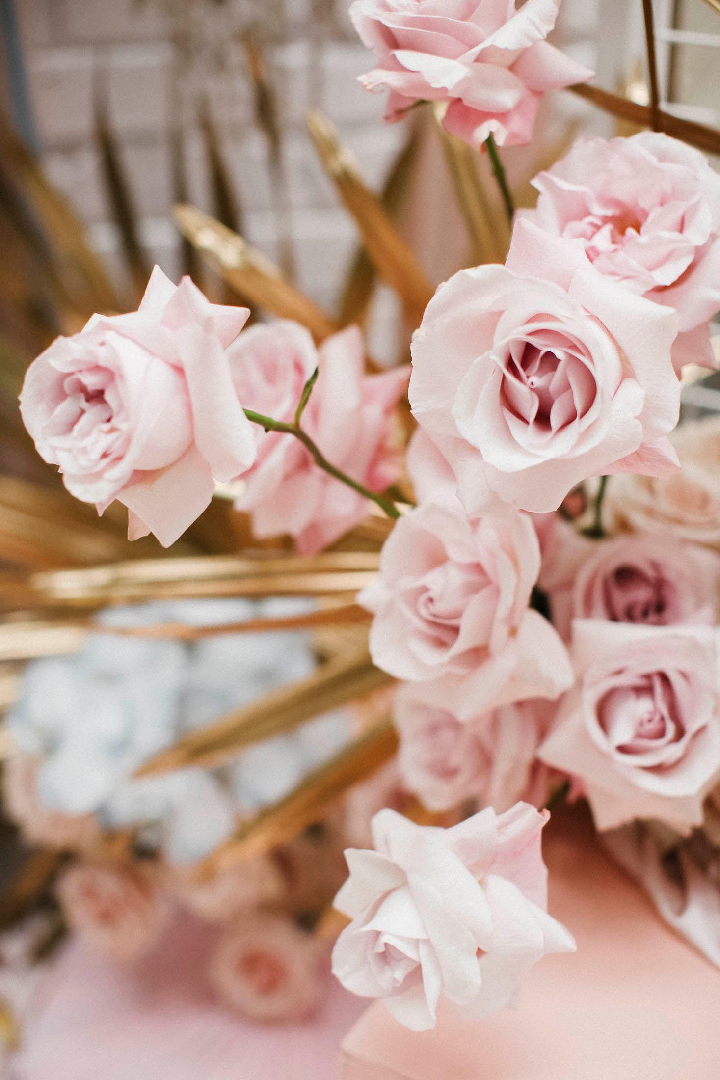 Lara + Cass Bohemian Blooms juliet's bedroom rose closeup