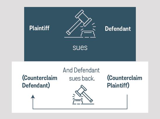 Home Depot - Counterclaim Case Artboard.png