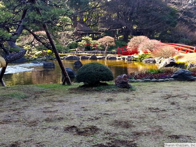 japan garden.jpg