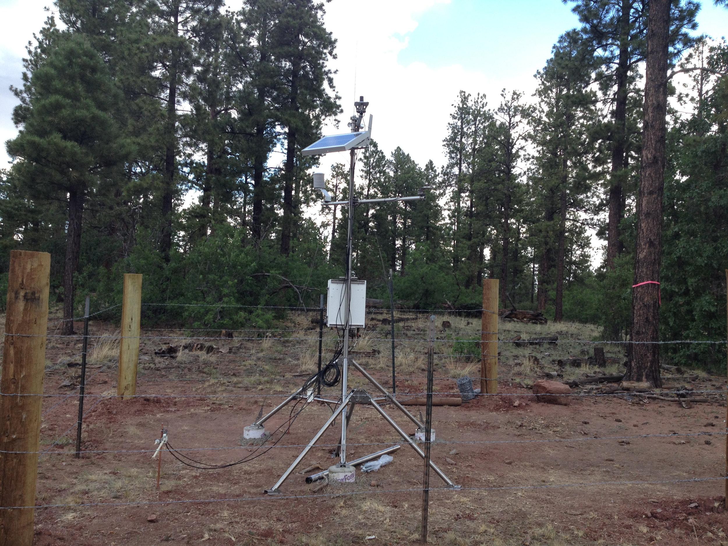 Weather station, Zuni Mountains