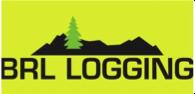 BRL logging