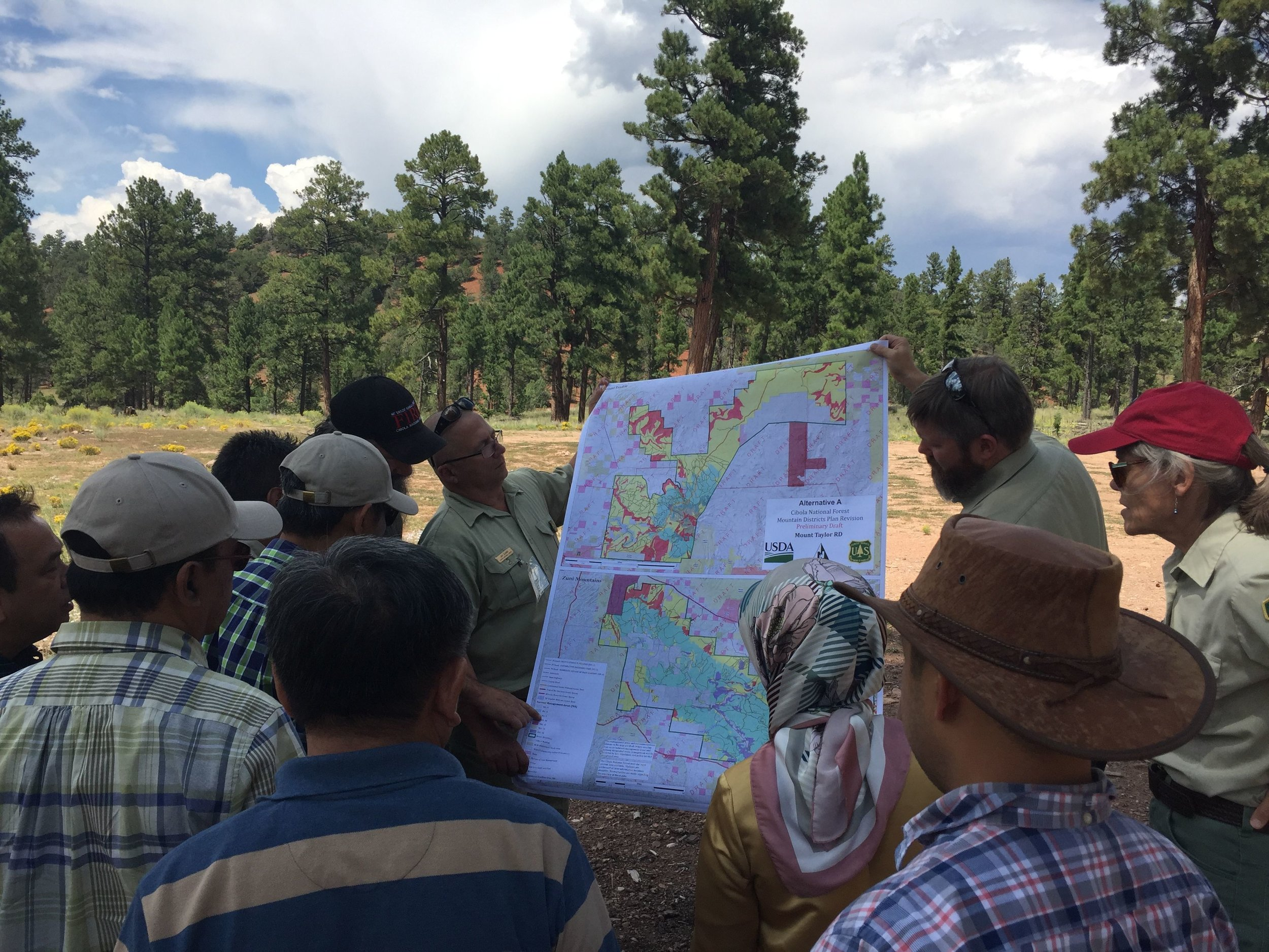 Jim Gumm, Matt Rau, and Elaine Kohrman share a draft map of proposed work in the Mt. Taylor Ranger District