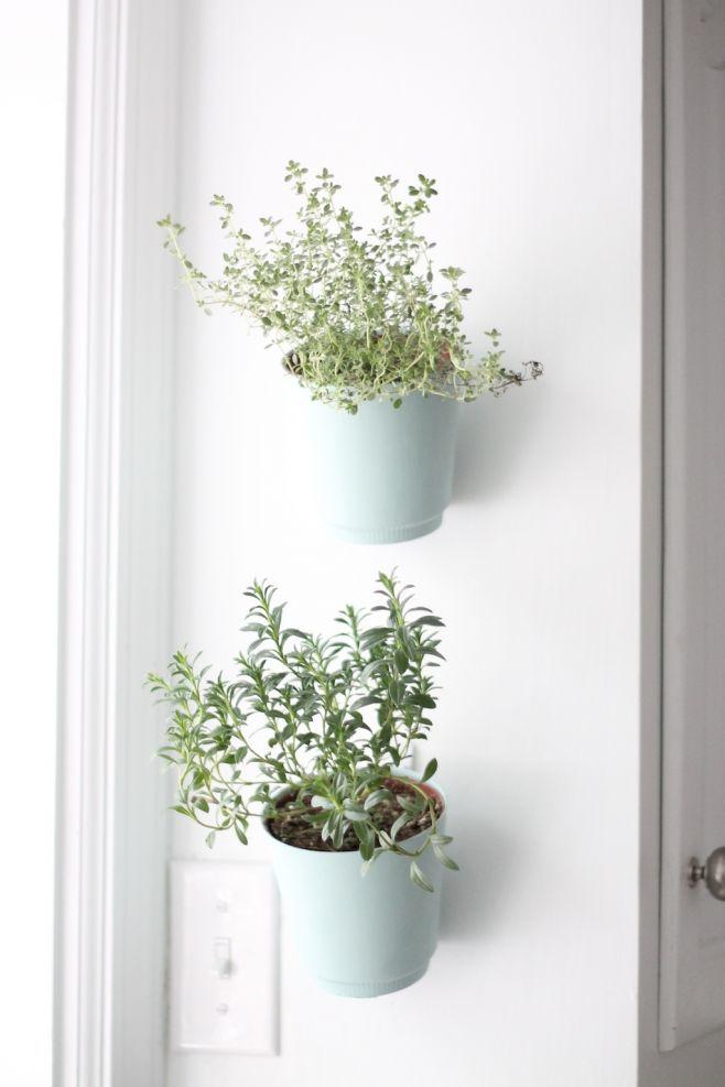 julieblanner_hanging-planters.jpg