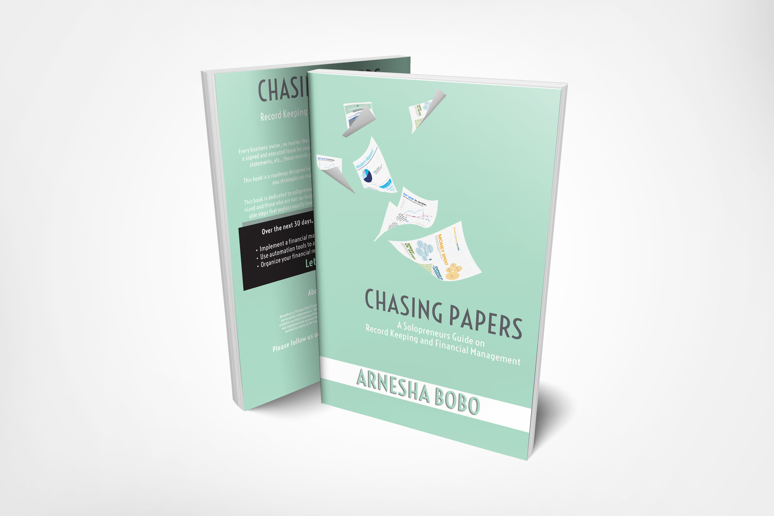 bausybooks.chasing paper.mock up.jpg