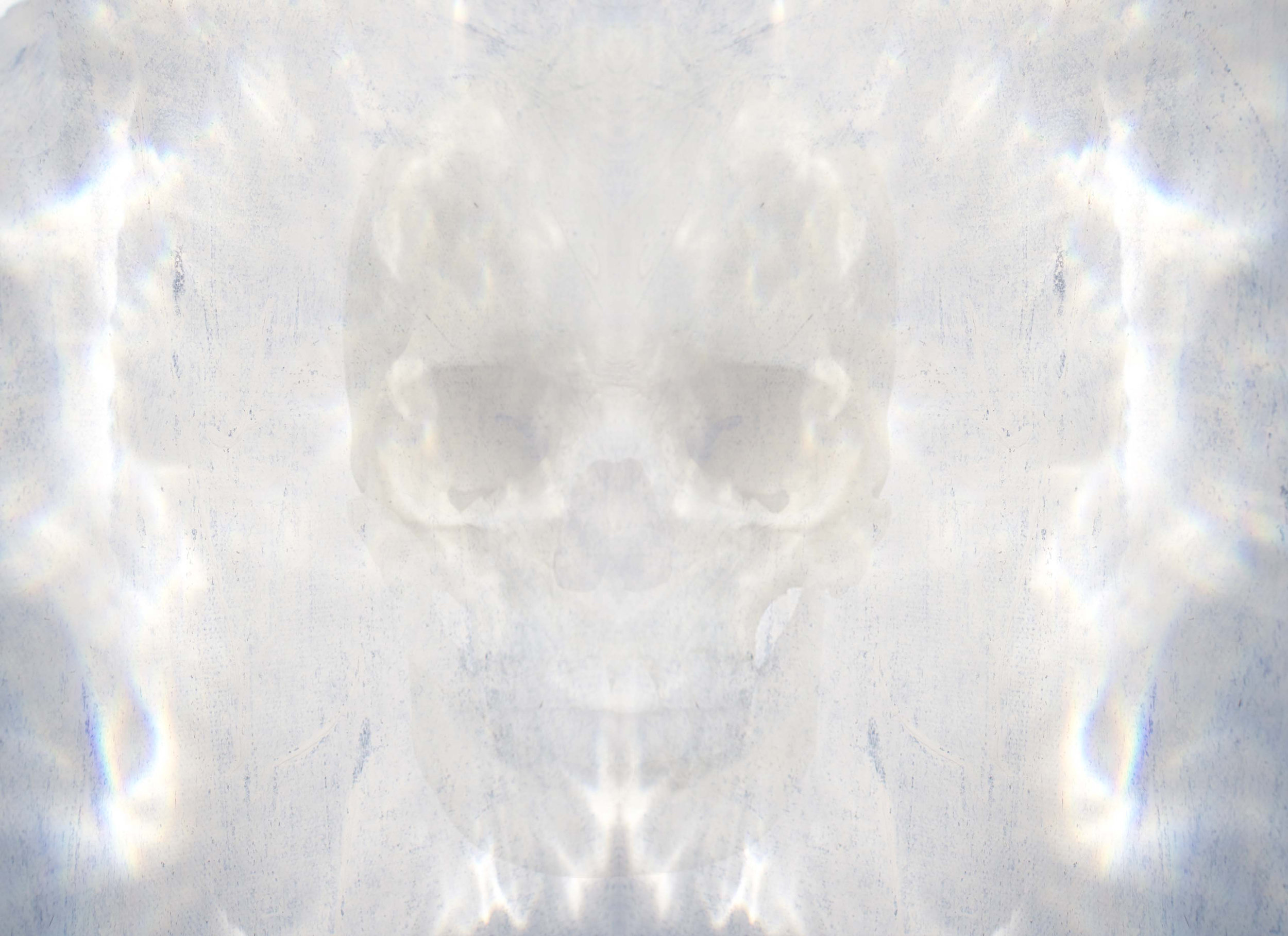 "Frequencies - Light Rays_Skull   Print on Glass  30"" x 24"""