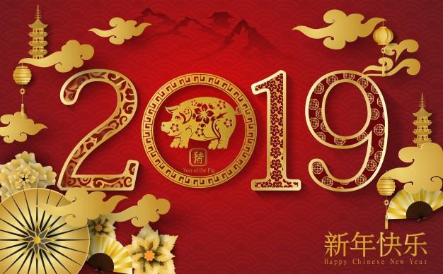 Chinese NY logo.jpg