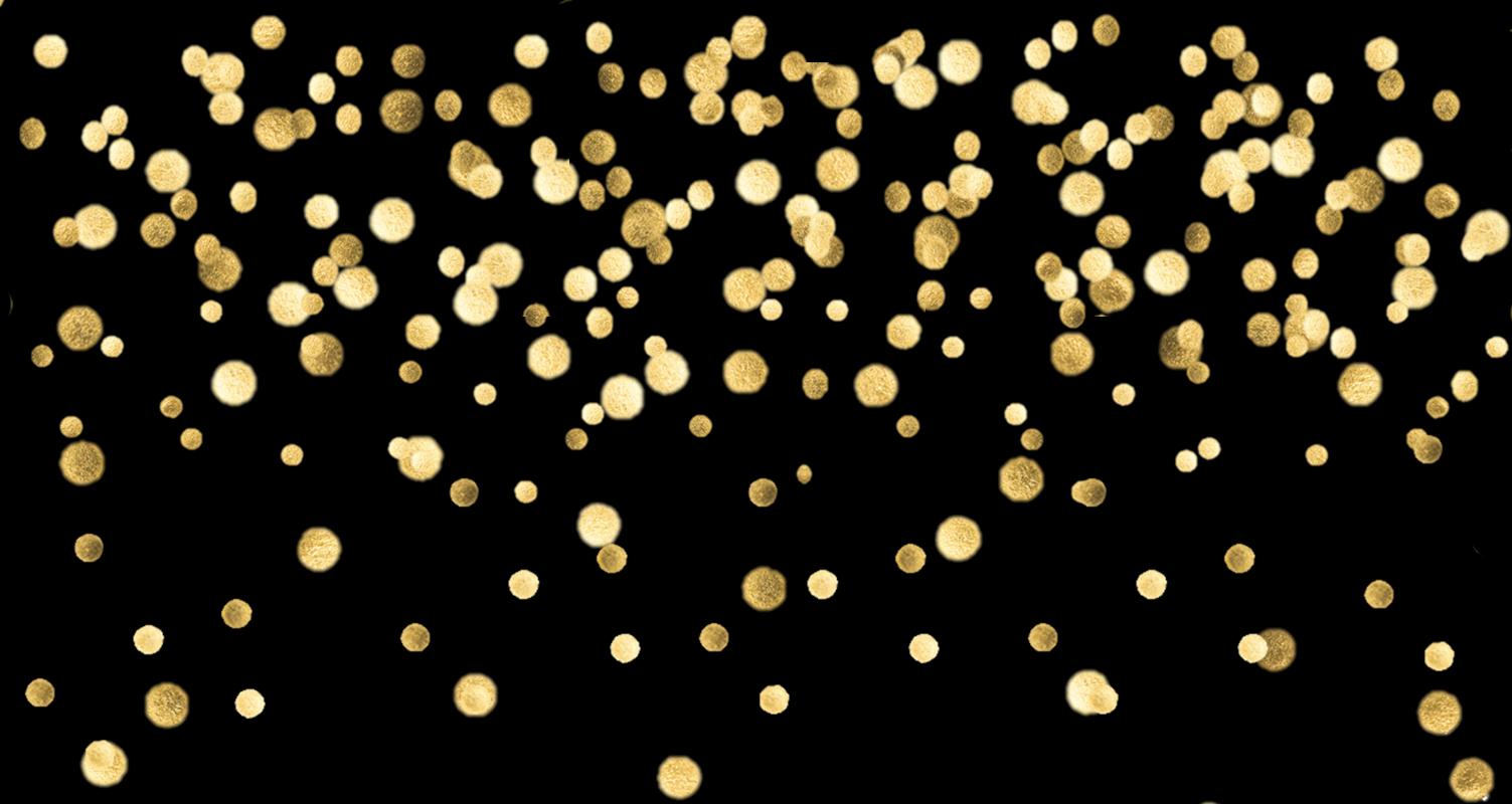 gold-confetti.png