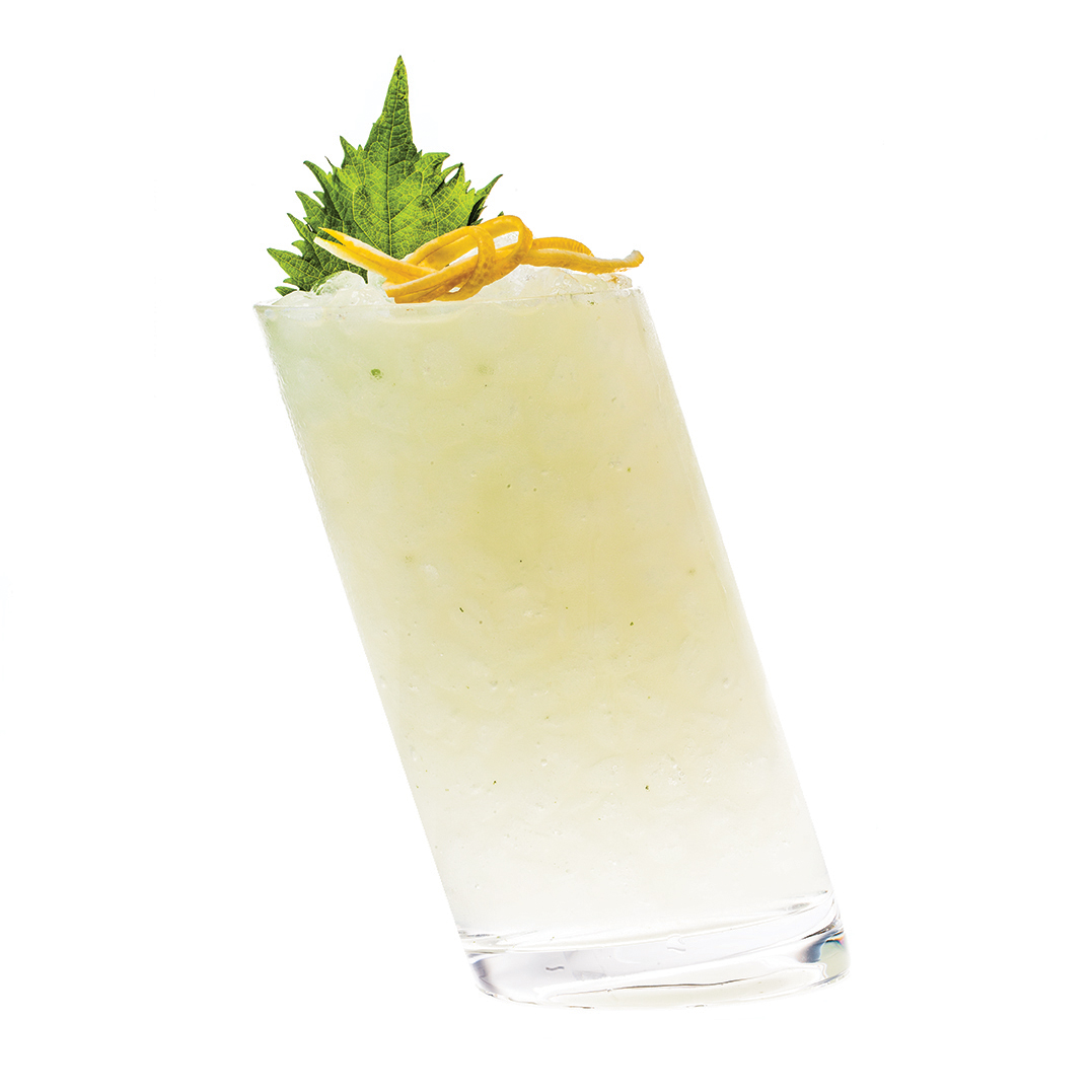BIG IN JAPAN - 2 parts KLEOS Mastiha Spirit1⁄2 part fresh lemon juice1⁄4 part simple syrup4 shiso leavesShake all ingredients vigorously.Strain over fresh crushed ice in a highball.Garnish with a lemon twist and shiso leaf.                                       Wishful thinking .