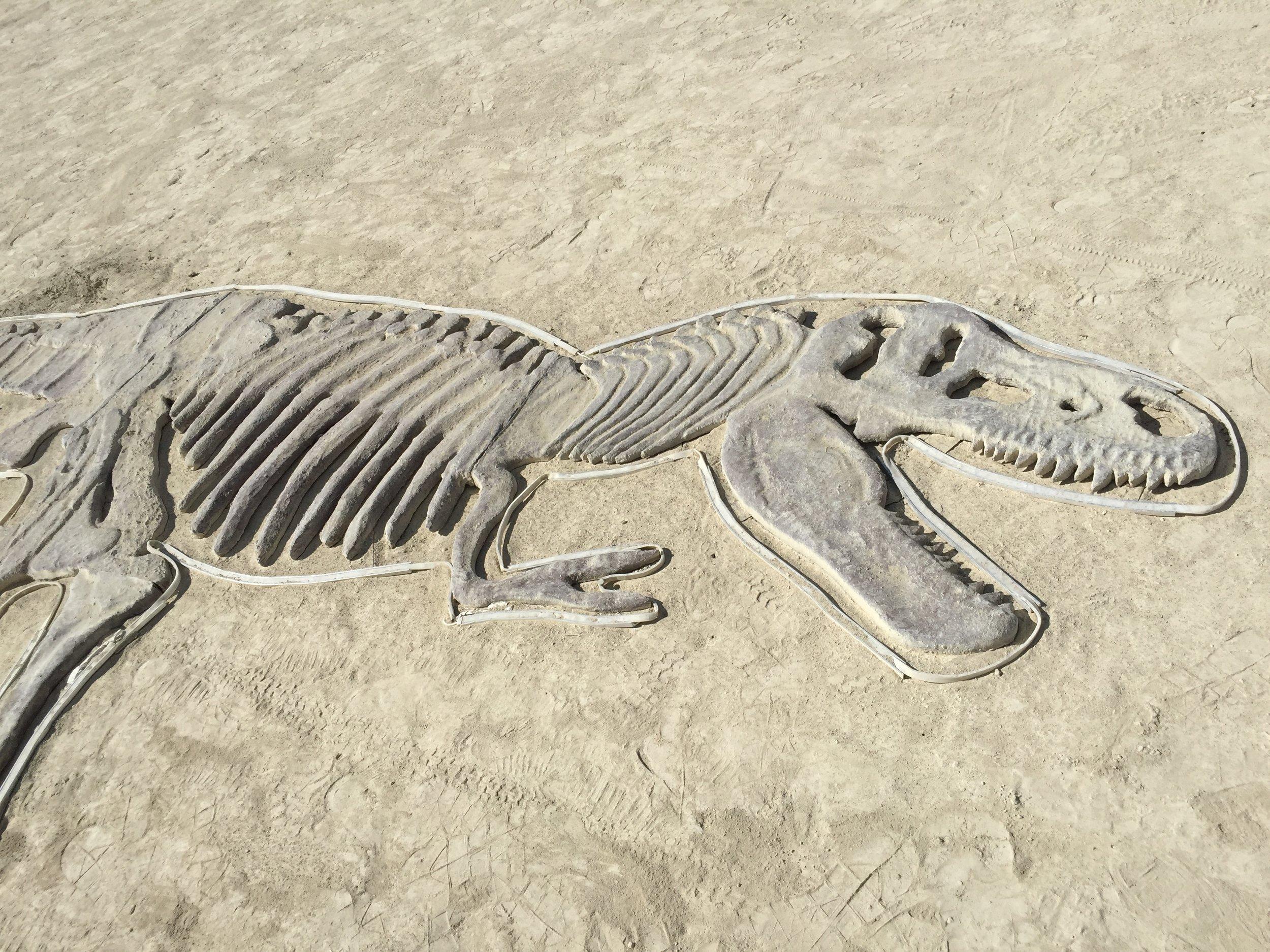Yori Ben-Haim, dinosaur fossil, Burning Man, 2016