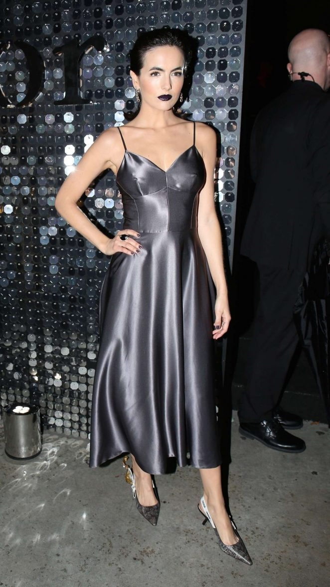 grayd-dress-slip-silk-brun-camillabelle-gray-shoe-pumps-fall-winter-dinner.jpg