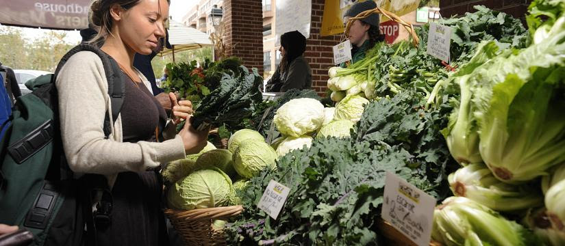 Farmers' Markets - The Food Trust, Farm to City, and Growing Roots host farmers' markets throughout the Greater Philadelphia Region, many year round. You can meet your favorite farmers in person and build a personal relationship with them. And many of these farmers' markets accept EBT! The Food Trust's markets also host a program called Philly Food Bucks, which is similar to Fair Food's former Double Dollars Program.