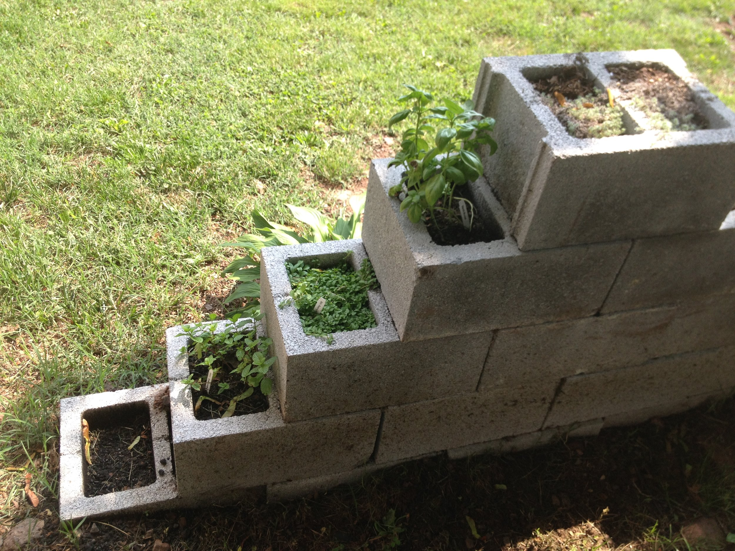 Hill School's pyramid garden packs in herbs in a vertical space.