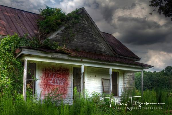 House_Love.jpg