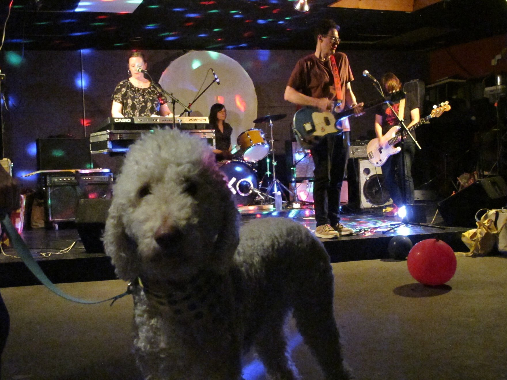 Horizontal Hold playing live. Also, dog. CREDIT: Mimi McLaughlin