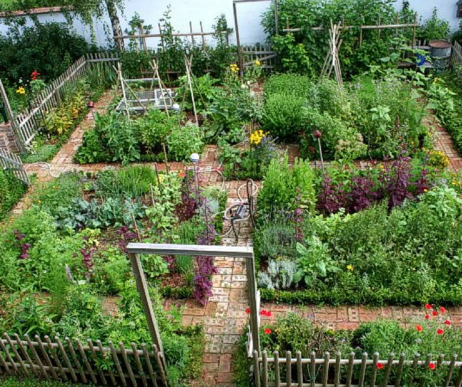 Beautiful urban permaculture garden example.