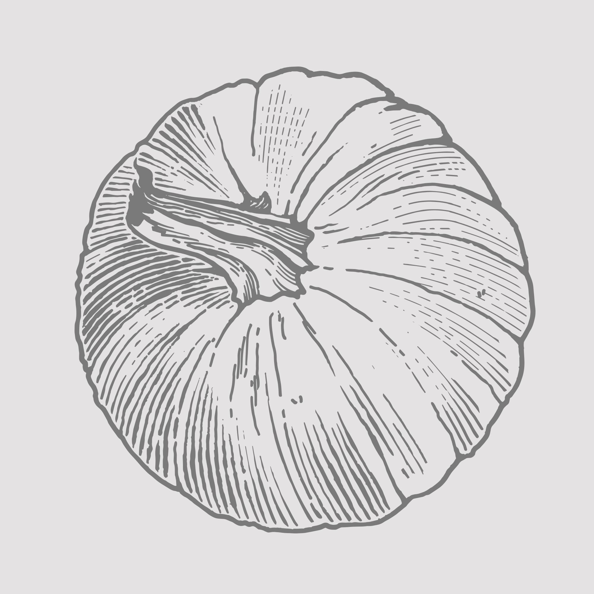 Pumpkin 2.png