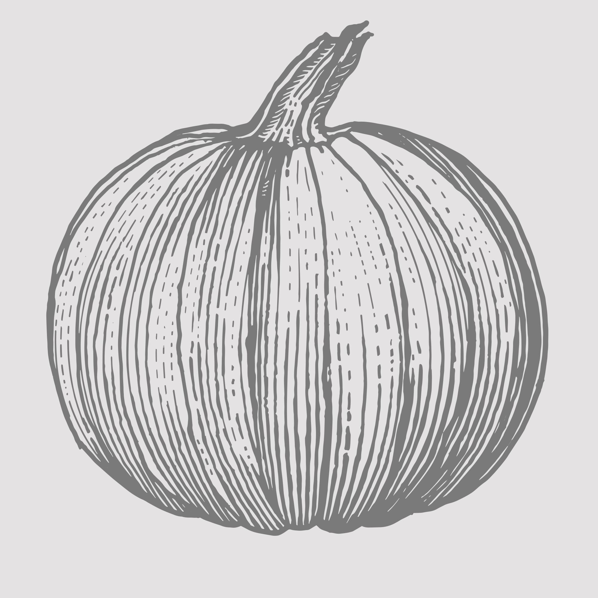 Pumpkin 5.png
