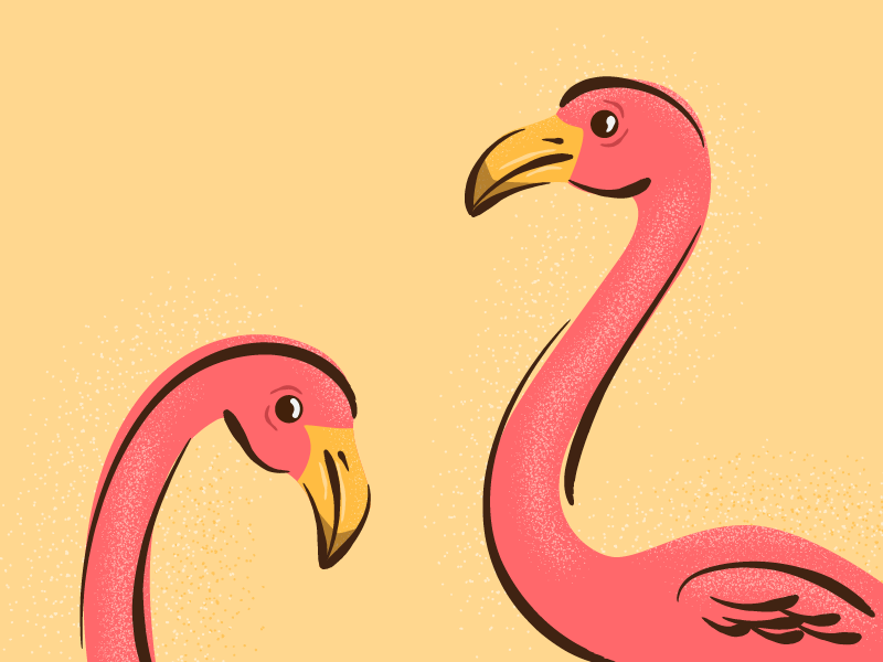 3_29_FlamingoFriends_ForDribble.png