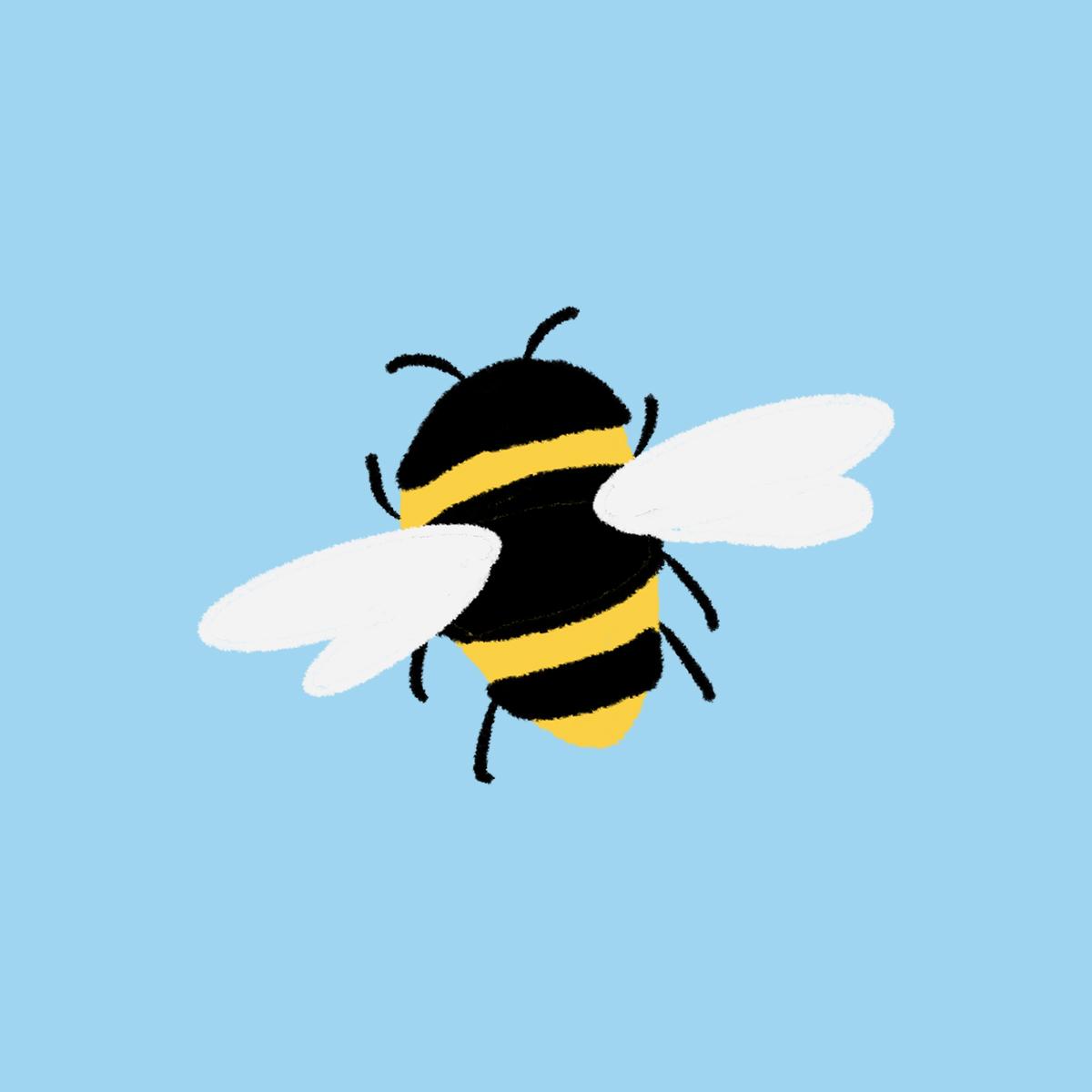 Doodle_Bumblebee.jpg