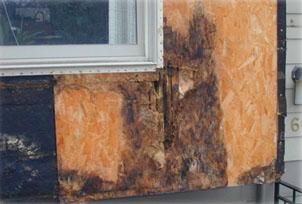 Moisture Control Exterior Window.jpg