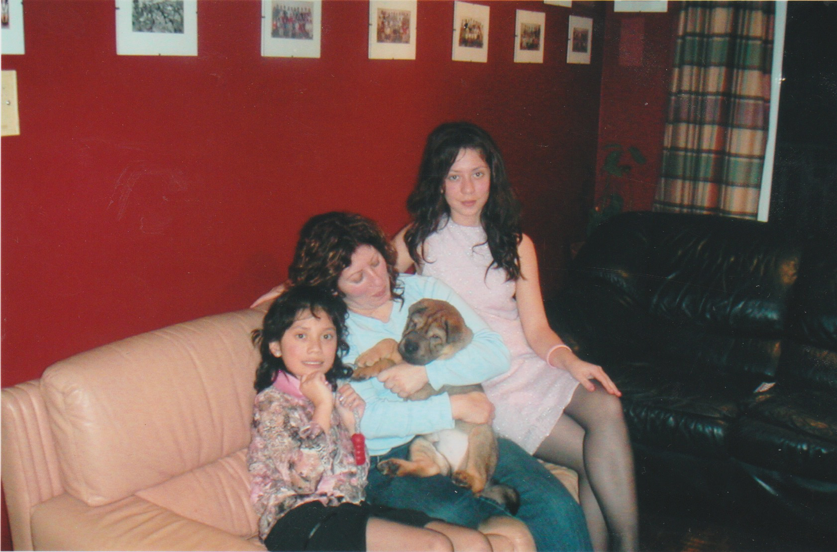 (Don't judge me for this picture, you guys! My mom's house is currently under renovation so all of our family albums have been packed away meaning I couldn't find a solo pic of Ty as a puppy) This was a few weeks after we brought him home- my sister, my mom, Ty, and myself- Christmas 2005
