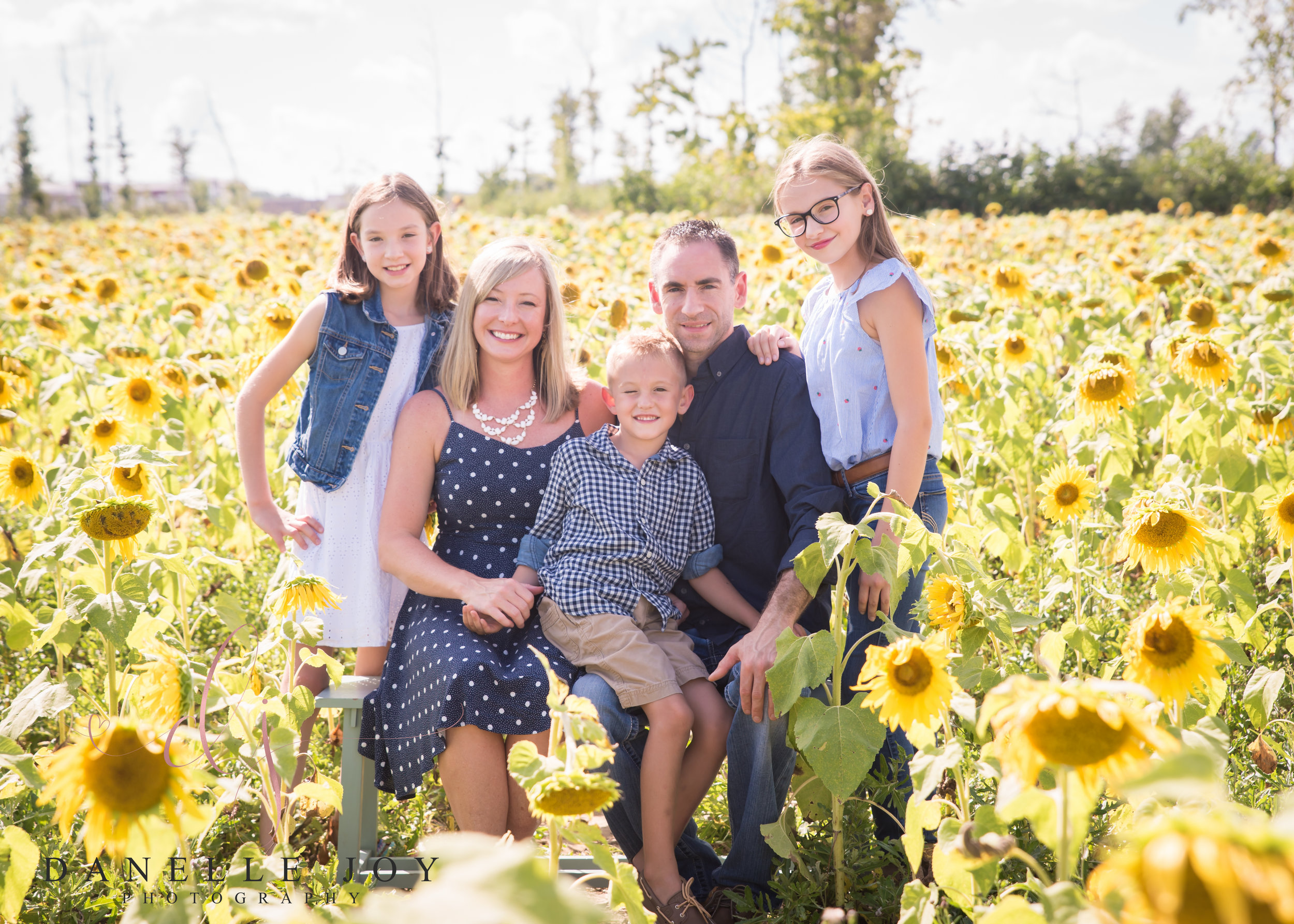 Maria's Field of Hope | Sunflower Mini Sessions | Avon, Ohio