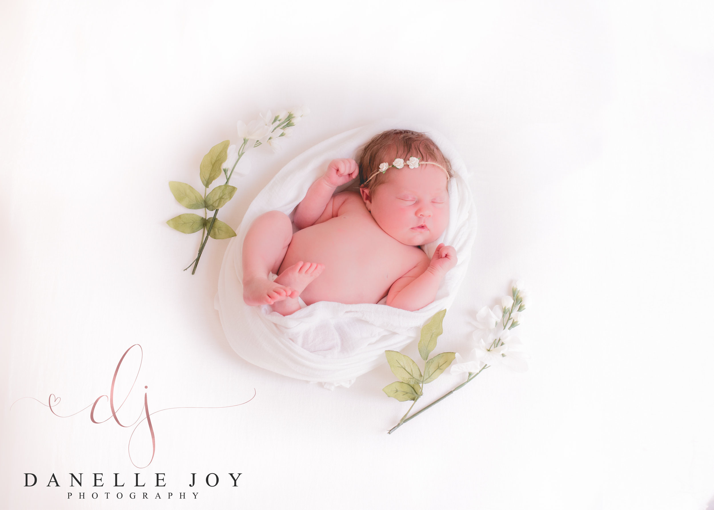 Cleveland Newborn Photograper, Mentor Ohio Photographer, Newborn Photographer