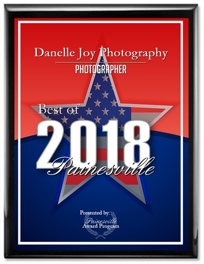 Best of 2018 Painesville, Photographer, Best Cleveland Ohio Photographer, Family Photographer, Child Photographer, Newborn Photographer