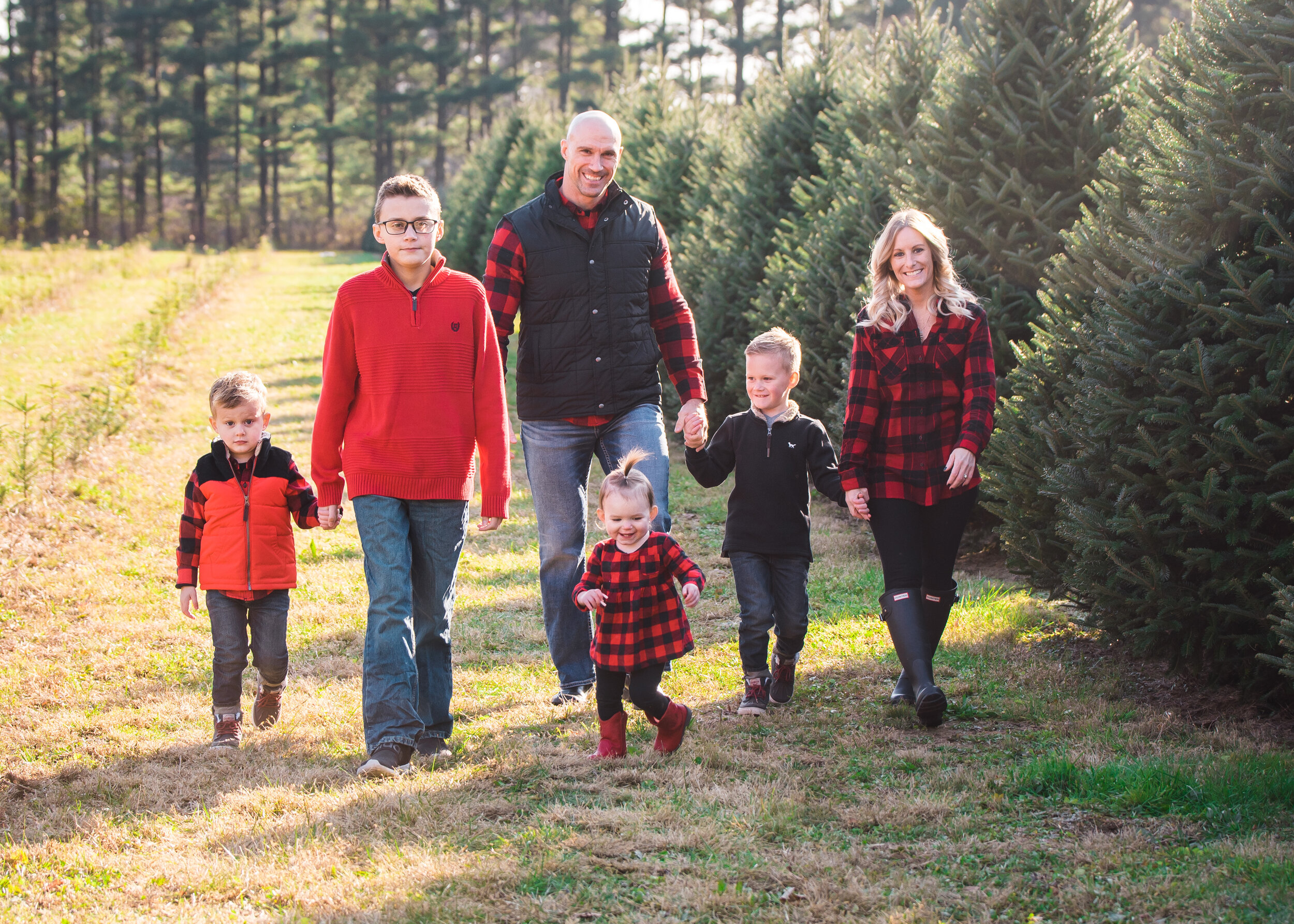 Christmas Tree Farm Photography
