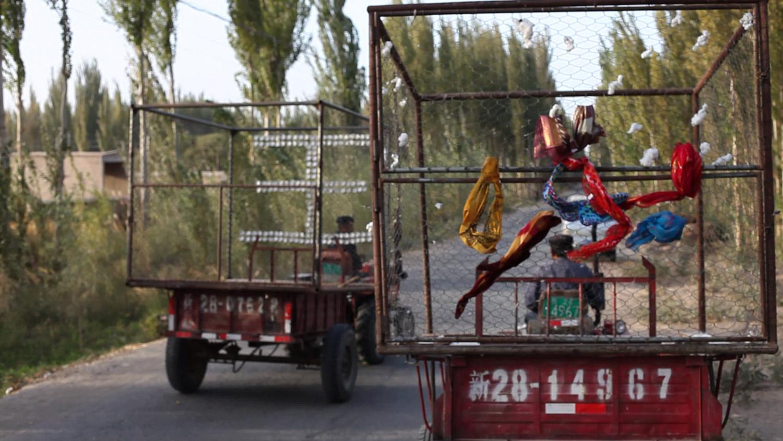 **108_19 trucks.jpg