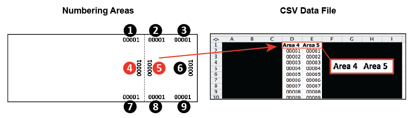 Variable Numbering