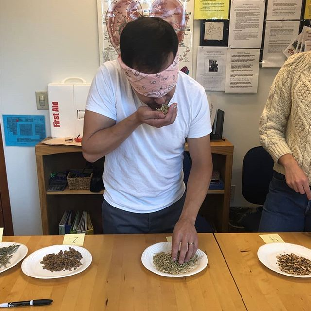 usually students [mostly] rely on their sight to complete the herbal ID portion of our comprehensive exams, but SOME OF US WANT TO TRY IT BLINDFOLDED... Dylan identified 11/15 herbs using smell, taste, and touch. 🧐🤯🏁🏁 - - - - - #acupuncture #SIEAM #seattle #georgetownseattle #herbalremedies #naturalremedies  #chinesemedicine #chineseherbs #herbalmedicine #針灸 #針灸學 #中藥