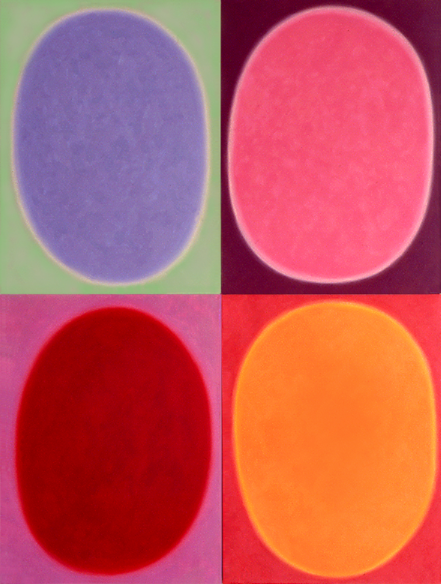 """Silent 14, oil on canvas, 2003, series of 4 panels W18"""" x H24"""" each, total format W36"""" x H48"""". Private collection."""
