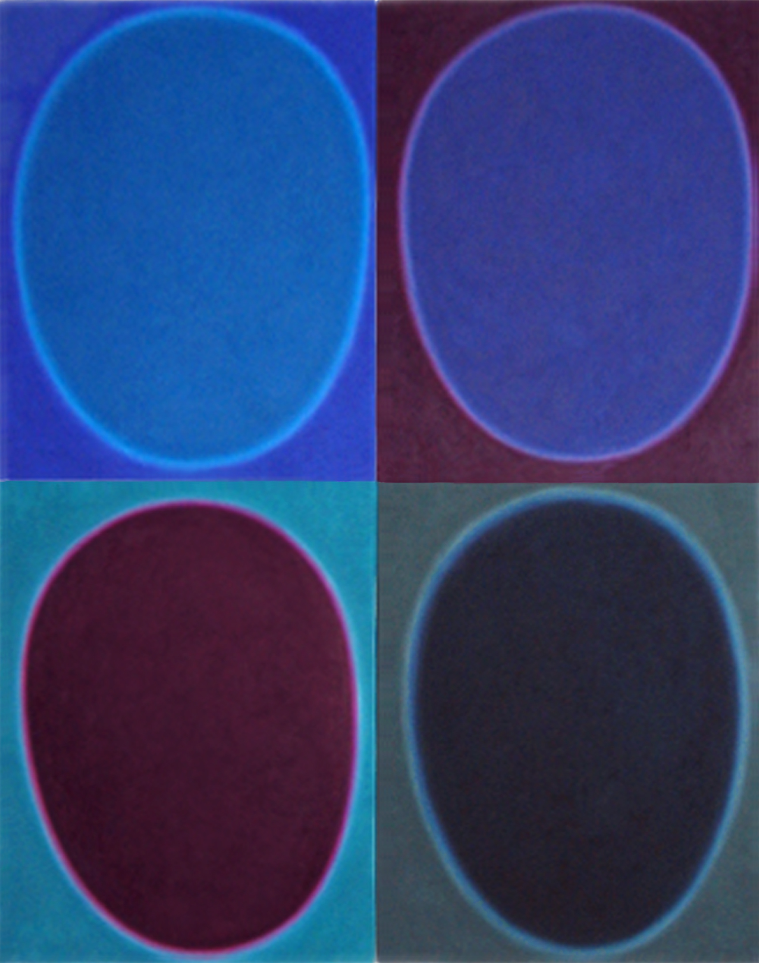 """Silent 16, oil on canvas, 2004, series of 4 panels W24"""" x H36"""" each, total format W48"""" x H72"""". Private collection."""