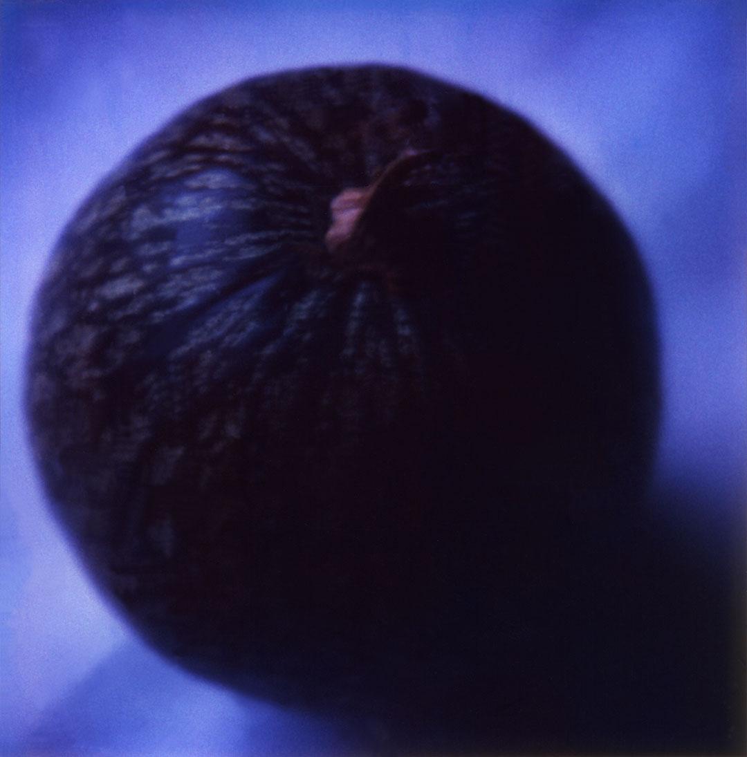 06.Px1.2003-8'-300dpi.w.jpg