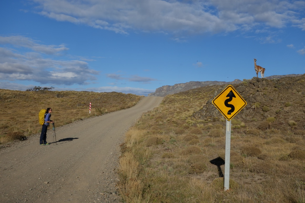 Instead of hitchhiking, we walk the 11km to Parque Patagonia.