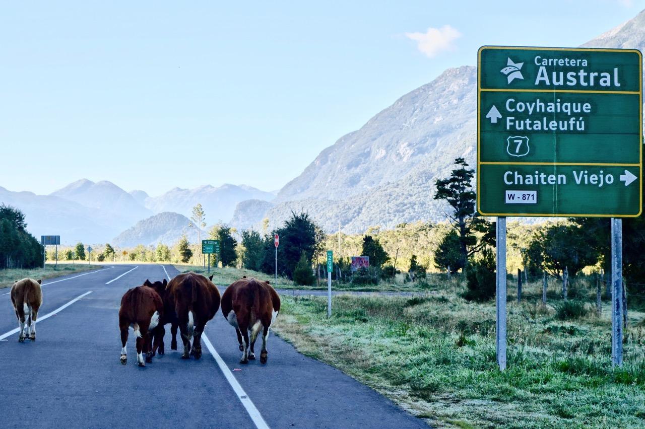 Traffic along the Carretera
