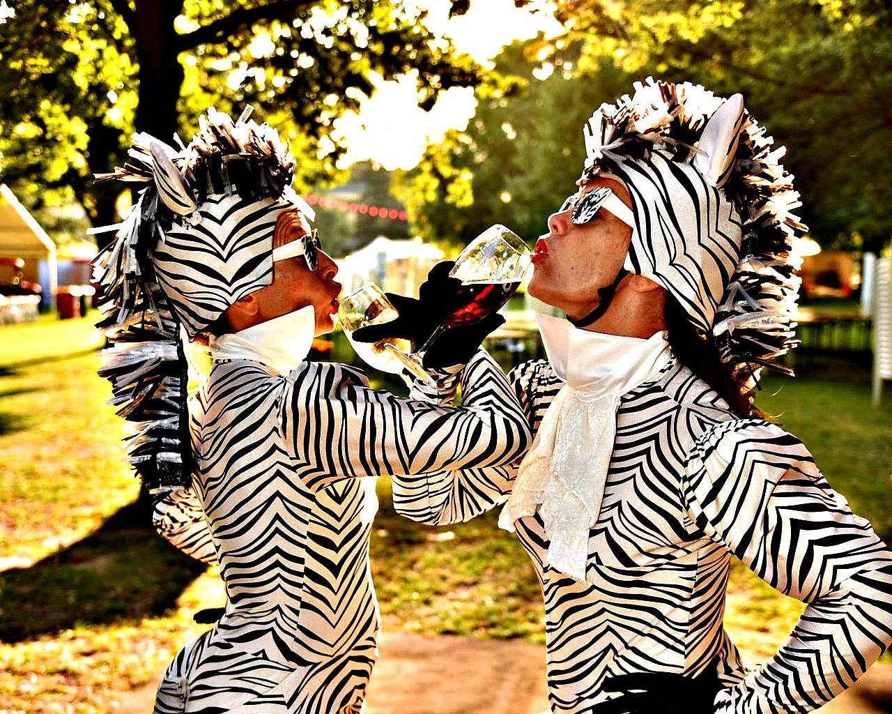 Zebras drinking wine 1280 x 800 crop.jpg