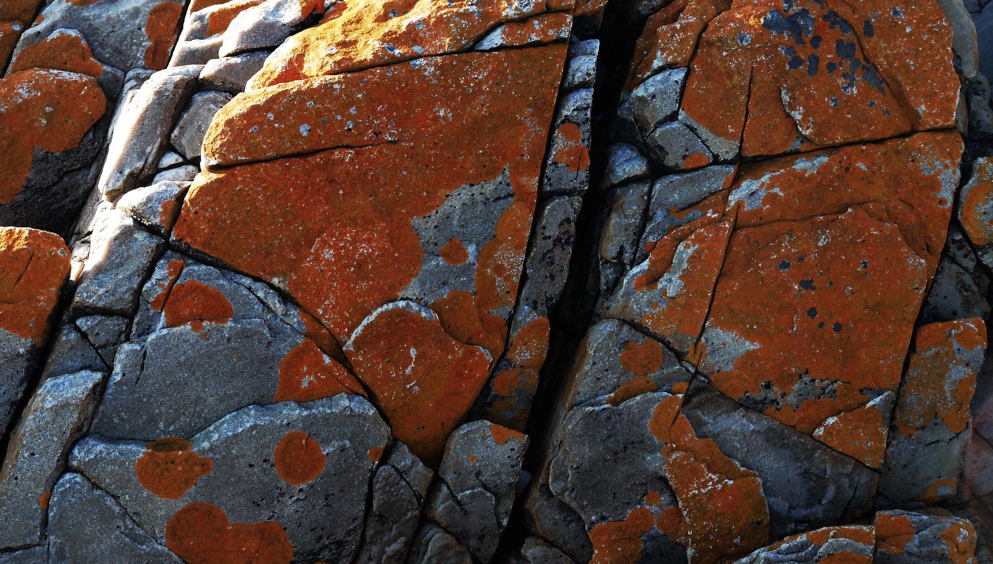 orange rock.jpg