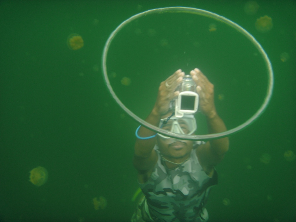 jesse w buble ring at jellyfish_1024.jpg