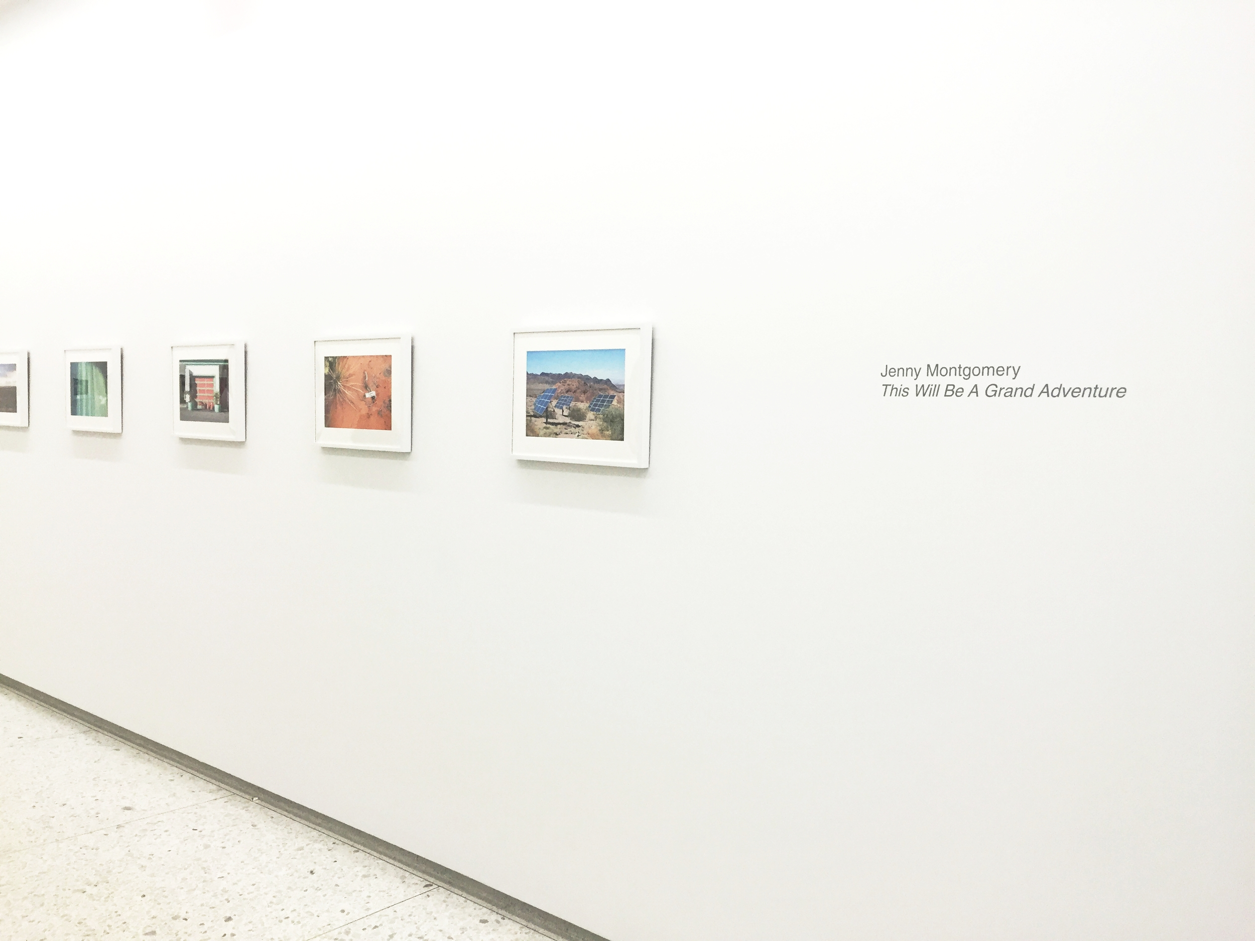 Installation View:  Jenny Montgomery: This Will Be A Grand Adventure