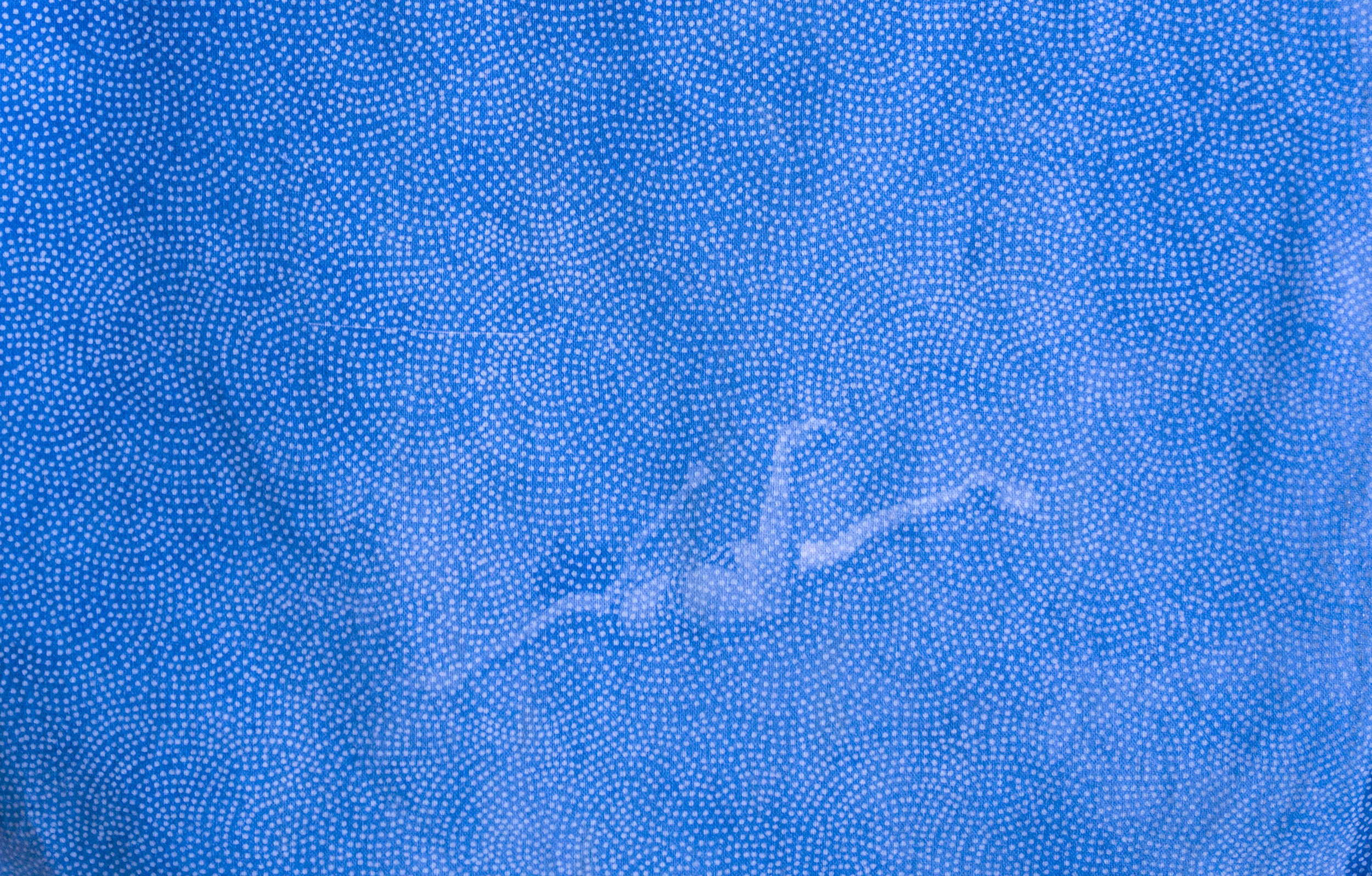 Untitled, 2017, Cyanotype on fabric, 22X30 cm.jpg