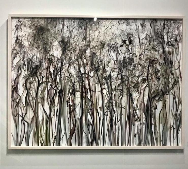 Shai Kremer,  Perception #17 , 2017, Archival pigment print, Edition of 7+2AP, 48x64 inches  Litvak Contemporary Booth: Installation View