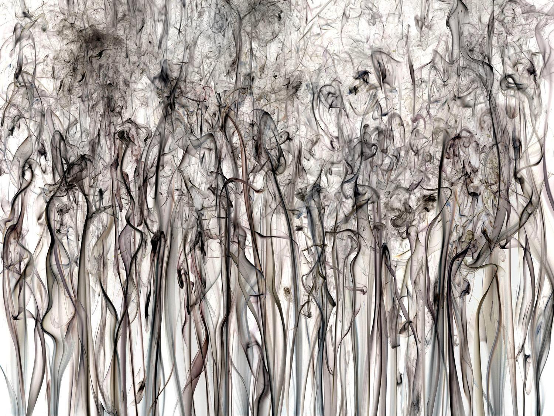 Shai Kremer,  Perception #17 , 2017, Archival pigment print, Edition of 7+2AP, 48x64 inches